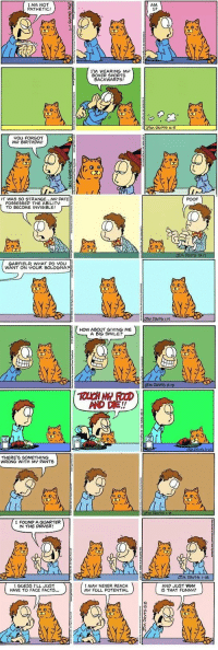 tatooinedovah: shinga-tumblr:   I remember when people first realized how much funnier these comics were just without Garfield's dialog, which Jon was never able to hear anyway. Garfield only ever communicated to us readers in thought balloons, after all. What we're seeing here is Jon's canonical reality.  I'm torn between laughing at these and being deeply worried for Jon lol   this is like 100% what living with cats is like : I AM NOT  PATHETIC  AM  I?  e o  I'M WEARING M  BOXER SHORTS  BACKWARDS!  灭)  YOU FORGOT  MO BIRTHDAY  IT WAS SO STRANGE..MY DATE  POOF  POSSESSED THE ABILITY  TO BECOME INVISIBLE!  ca  GARFIELD WHAT PO VOU  WANT ON YOUR BOLOGNA?  灭)、   HOW ABOUT GIVING ME  A BIG SMILE?  THERE'S SOMETHING  WRONG WITH MY PANTS  I FOUND A GUARTER  IN THE DRVER!  (O  IMAY NEVER REACH  MY FULL POTENTIAL  I GUESS I'LL JUST  AND JUST WHY  IS THAT FUNNY? tatooinedovah: shinga-tumblr:   I remember when people first realized how much funnier these comics were just without Garfield's dialog, which Jon was never able to hear anyway. Garfield only ever communicated to us readers in thought balloons, after all. What we're seeing here is Jon's canonical reality.  I'm torn between laughing at these and being deeply worried for Jon lol   this is like 100% what living with cats is like