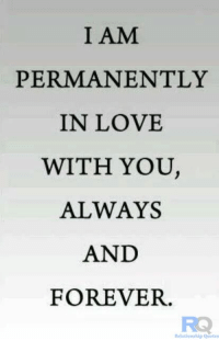 relationship quotes: I AM  PERMANENTLY  IN LOVE  WITH YOU  ALWAYS  AND  FOREVER.  Relationship Quotes