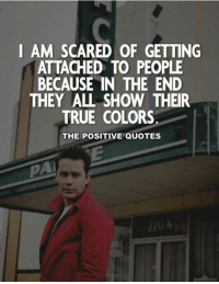 Like The Positive Quotes ❤: I AM SCARED OF GETTING  ATTACHED TO PEOPLE  BECAUSE IN THE END  THEY ALL SHOW THEIR  TRUE COLORS  THE POSITIVE QUOTES  220 Like The Positive Quotes ❤