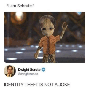 "identity: ""I am Schrute.""  Dwight Scrute O  @dwightscrute  IDENTITY THEFT IS NOT A JOKE"