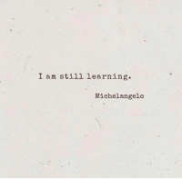 I Am Still Learning: I am still learning.  Michelangelo