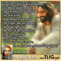 Jesus, Love, and Memes: I am the Light of this world and  come to shine on this  dark World, in which you  are now living;  little flowers, you need  My Light like any flower  g light and  nee  the rays of the sun to live,  you too, need the  Rays of My Love to  live for Love andin love  for such are the riches of My race  December 7, 1988  www  ORG Jesus IS The Light of the World! http://www.tlig.org/en/messages/1149/