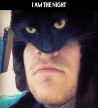 😂😂😂😂: I AM THE NIGHT 😂😂😂😂