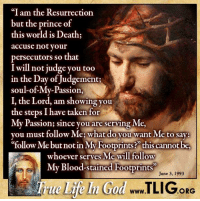 "Jesus, Memes, and Prince: ""I am the Resurrection  but the prince of  this world is Death;  accuse not your  persecutors so that  I will not judge you too  in the Day of Judgement:  soul-ofMy-Passion,  I, the Lord, am showing you  the steps I have taken for  My Passions since you are serving Me  you must follow Me: what do you want Me  to say:  follow Me but not in My Footprints this cannot be,  whoever serves Me Wil follow  My Blood-stained Footprints""  June 3, 1993  ORG To follow Jesus, is to walk in his footsteps! http://www.tlig.org/en/messages/1149/"