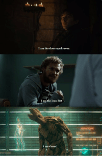 Raven, Asoiaf, and Iron Fist: I am the three eyed raven  I am the Iron Fist  SEQUENCING  I am Groot!  NTOF TALUHNİA <p>When the name says it all (xpost /asoiaf)</p>