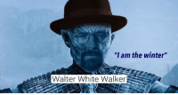 "Memes, Tumblr, and Walter White: ""I am the winter""  Walter White Walker <p><a href=""http://memehumor.net/post/164688157737/30-hilarious-memes-to-beat-those-sunday-blues"" class=""tumblr_blog"">memehumor</a>:</p>  <blockquote><p>30 Hilarious Memes To Beat Those Sunday Blues</p></blockquote>"