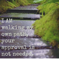 Memes, Approved, and 🤖: I AM  walking  my  own path  your  approval is  not neede