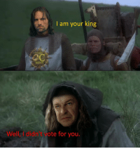 I Didnt Vote For You