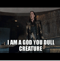 Memes, 🤖, and Creature: I AMAGOD YOU DULL  CREATURE Still the best Avengers scene ever 😂 | Follow @dcfact