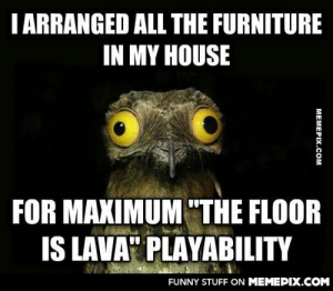 "I am an adult and I make my own decisions.omg-humor.tumblr.com: I ARRANGED ALL THE FURNITURE  IN MY HOUSE  FOR MAXIMUM ""THE FLOOR  IS LAVA"" PLAYABILITY  FUNNY STUFF ON MEMEPIX.COM  МЕМЕРIХ.Сом I am an adult and I make my own decisions.omg-humor.tumblr.com"