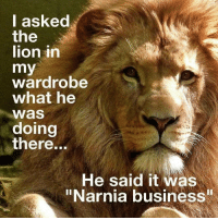 "https://t.co/PI2NoQv1ul: I asked  the  lion in  my  wardrobe  what he  Was  doing  there...  He said it was  ""Narnia business https://t.co/PI2NoQv1ul"