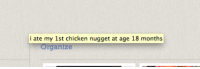 Tumblr, Blog, and Chicken: i ate my 1st chicken nugget at age 18 months gaygaara:WHY DID THIS JUST APPEAR ON MY COMPUTER