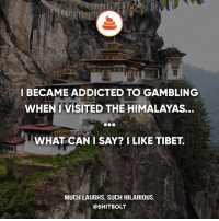 Memes, 🤖, and Csgo: I BECAME ADDICTED TO GAMBLING  WHEN I VISITED THE HIMALAYAS.  WHAT CAN I SAY? I LIKE TIBET.  MUCH LAUGHS. SUCH HILARIOUS.  @SHITBOLT the only gambling i hate is csgo gambling