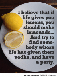Life, Party, and Tumblr: I believe that if  life gives you  emonS, you  should make  lemonade...  And try to  find some-  body whose  life has given them  vodka, and have  a party.  you should probably go to TheMetaPicture.com epicjohndoe:  Best Thing To Do When Life Gives You Lemons