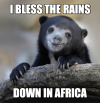 I Bless The Rains Down In Africa: I BLESS THE RAINS  DOWN IN AFRICA