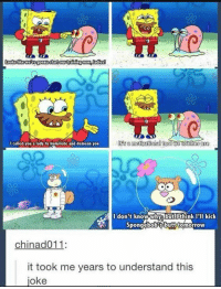 CHOK ES: I called you a lady to humiliate and demean you  I don't know-whv butlthinkII kick  Spongebob's butt? tomorrow  chinad011  it took me years to understand this  oke CHOK ES