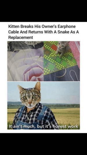 I can't stay mad at you kitty via /r/wholesomememes https://ift.tt/2PNb9Fx: I can't stay mad at you kitty via /r/wholesomememes https://ift.tt/2PNb9Fx