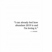 "How, Can, and Feel: ""I can already feel how  abundant 2019 is and  I'm loving it.""  - s. mcnutt"