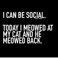 If that's as much socializing as I have to do today, I'll be happy!: I CAN BE SOCIAL  REBEL CIRCUS  TODAY I MEOWED AT  MY CAT AND HE  MEOWED BACK If that's as much socializing as I have to do today, I'll be happy!