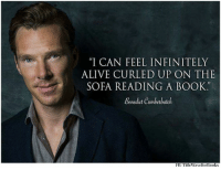 """Alive, Memes, and Benedict Cumberbatch: """"I CAN FEEL IN FINITELY  ALIVE CURLED UP ON THE  SOFA READING A BOOK  Benedict Cumberbatch  FIB TitleWaveforBooks"""