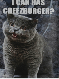 The recent discovery of a lolcat vault has over saturated the market reducing lolcat value by ▽-0.47 . SELL SELL SELL: I CAN HAS  EZBURGER? The recent discovery of a lolcat vault has over saturated the market reducing lolcat value by ▽-0.47 . SELL SELL SELL