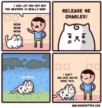 Bad, Fuck, and The Weather: I CAN LET YOU OUT BUT  THE WEATHER IS REALLY BAD!  RELEASE ME  CHARLES!  MEON  MEOW  MEON  CAN'T  BELIEVE YOU'VE  DONE THIS.  AH FUCK  WWW.RANDYOTTER COM