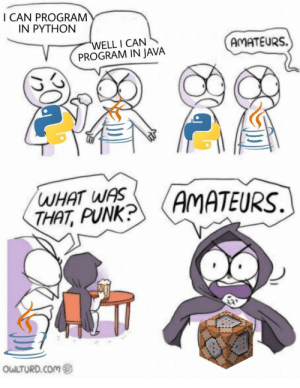 The best coding platform: I CAN PROGRAM  IN PYTHON  'WELL I CAN  PROGRAM IN JAVA  AMATEURS.  WHAT WAS  THAT, PUNK?  (AMATEURS.  OWLTURD.COM The best coding platform