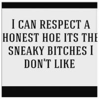 Ain't that the truth....: I CAN RESPECT A  HONEST HOE ITS THE  SNEAKY BITCHES I  DON'T LIKE Ain't that the truth....