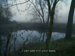 Can, Eyes, and I Can: I can see it in your eyes