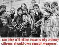 Memes, 🤖, and Citizen: I can think of 6 million reasons why ordinary  citizens should own assault weapons. ...