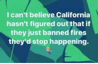 Memes, California, and 🤖: I can't believe California  hasn't figured out that if  they just banned fires  they'd stop happening.