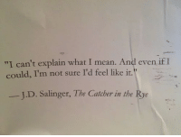 """rye: """"I can't explain what I mean. And even if I  could, I'm not sure I'd feel like it.  J.D. Salinger, The Catcher in the Rye"""