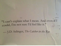 """rye: """"I can't explain what I mean. Andl even if I  could, I'm not sure I'd feel like it.  I.D. Salinger, The Catcher in the Rye"""