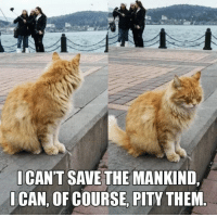 LOL: I CANT SAVE THE MANKIND  CAN, OF COURSE, PITY THEM LOL