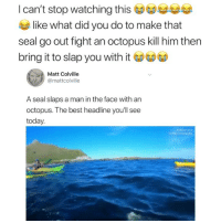 Instagram, Memes, and School: I  can't  stop  watching  thises  like what did you do to make that  seal go out fight an octopus kill him thern  bring it to slap you with it  Matt Colville  @mattcolville  A seal slaps a man in the face with an  octopus. The best headline youll see  today.  Instagram Gonna be late to school Bc my sister just had to take a shit