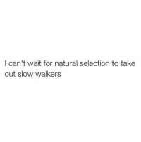 Instagram, Memes, and 🤖: I can't wait for natural selection to take  out slow walkers @thearchbish0pofbanterbury has to be the greatest account on Instagram😂
