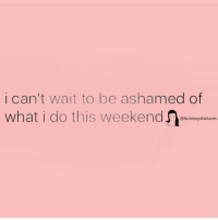 Girl Memes, What, and This: i can't wait to be ashamed of  what i do this weekendtckogrtaln  @fuckboysfailures