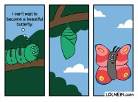 Beautiful, Dank, and Butterfly: I can't wait to  become a beautiful  butterfly  LOLNEIN.com Me going through puberty.  By LOLNEIN.com