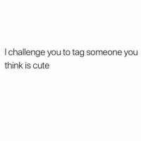 Cute, Funny, and Tag Someone: I challenge you to tag someone you  think is cute 👀🙃