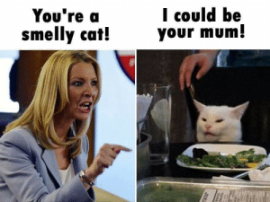 Cat, Smelly Cat, and Kinda: I could be  your mum!  Υου're a  smelly cat!  l It's kinda your fault