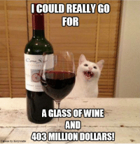 I can't stop whining!: I COULD REALLY GO  FOR  A GLASSOFTWINE  AND  403 MILLION DOLLARS!  Caption by Kittyworks I can't stop whining!