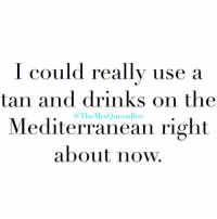 Okay, Girl Memes, and Tan: I could really use a  tan and drinks on the  Mediterranean right  about now  @TheMrsQueenBee Okay, but same ( @themrsqueenbee )