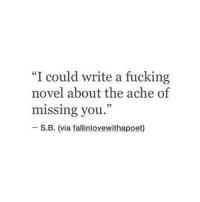 "Fucking, Via, and You: ""I could write a fucking  novel about the ache of  missing you.  05  S.B. (via fallinlovewithapoet)"