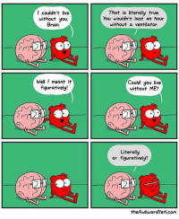 More comics are literally at theawkwardyeti.com: I couldn't live  without you,  Brain.  That is literally true.  You wouldn't last an hour  without a ventilator.  Well I meant it  figuratively!  Could you live  without ME?  川  川  Literally  or figuratively?  theAwkwardYeti.com More comics are literally at theawkwardyeti.com