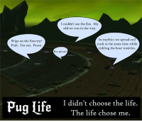 Memes, Pugs, and 🤖: I couldn't see the fire. My  add-on was in the way.  In mythics we read and  Wipe on the first try?  stack at the same time while  Pssh. I'm out. Peace  tickling the boss' testicles.  Rez please?  Pug life  I didn't choose the life.  The life chose me. RIP pugging... ~ Ysabell
