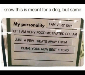 I didn't even realize this was for a dog. by dangernoodles628 MORE MEMES: I didn't even realize this was for a dog. by dangernoodles628 MORE MEMES