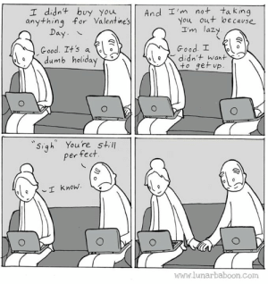 Dumb, Lazy, and Memes: I didnt buy youAnd I'm not tak ing  You out be cavse  anything for Valentine's  I'm lazy  Good. I  to ger vp  Day  Good. It'sa  dumb holiday  ˋ ele didn't want  Sigh Youre still  per fect.  I know.  www.lunarbaboon.com Happy Dumb Day... www.lunarbaboon.com