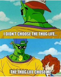 Anime, Broly, and Bulma: I DIDNT CHOOSE THE THUG LIFE  THE THUGLIFECHOSEM My Boii piccolo savage asf 💯💯💯 ______________________🐉____________ 35k🔒⬇⬇⬇⬅⬅ 👉FOLLOW THE BEST BEERUS ACCOUNT @lord.beeruskun👈 👉FOLLOW THE BEST BROLY ACCOUNT @lord.broly👈 ....................................... Tags (IGNORE) goku | vegeta | goten | gohan dragonball | dragonballz | dragonballsuper dragonballzkai | ssgss | otaku piccolo | kuririn | saitama sasuke| beerus | whis | anime | manga | Like4Like | over9000 bulma | dbs | dbz | android17 | itachi follow4follow | f4f | doubletap | naruto | onepunchman