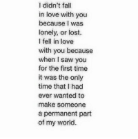 I Didnt Fall In Love With You