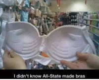 Dank, 🤖, and Bras: I didn't know All-State made bras